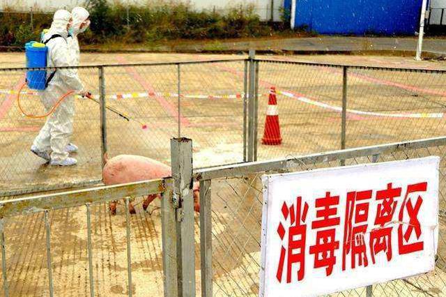 河北省两办印发通知:切实加强非洲猪瘟防控工作