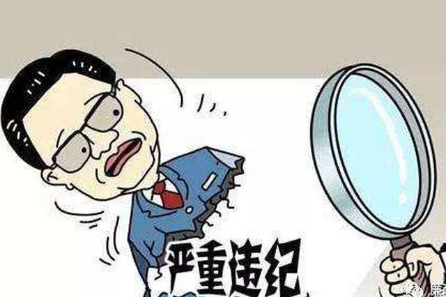 公安部原党委委员副部长孟宏伟严重违纪违法被双开