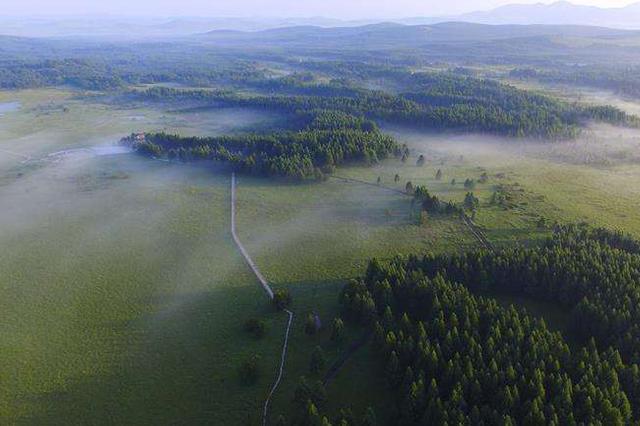 河北将创建600个国家森林乡村 保护乡村自然生态