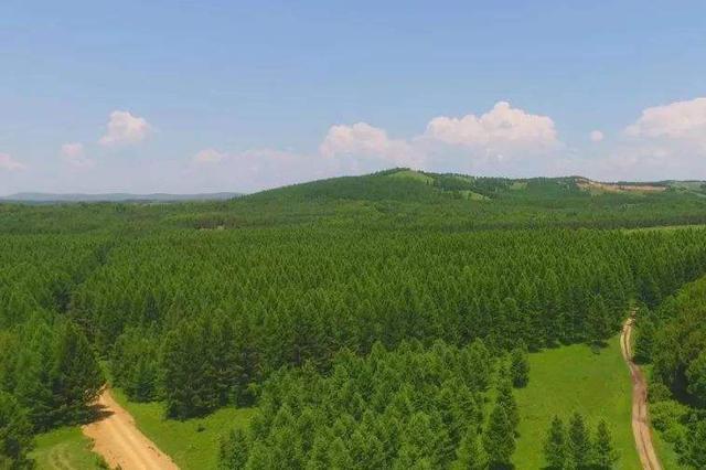 到2035年河北将完成营造林5180万亩