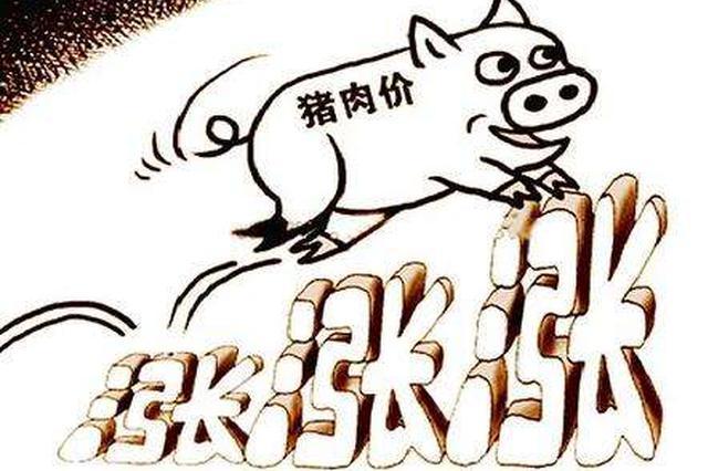 石家庄:猪肉价格上涨 生猪供应量减少是主因
