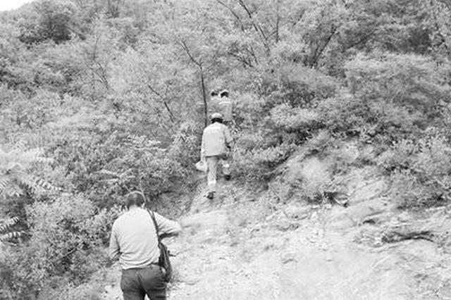 邢台三名游客被困悬崖八小时 体力透支身体虚脱无力