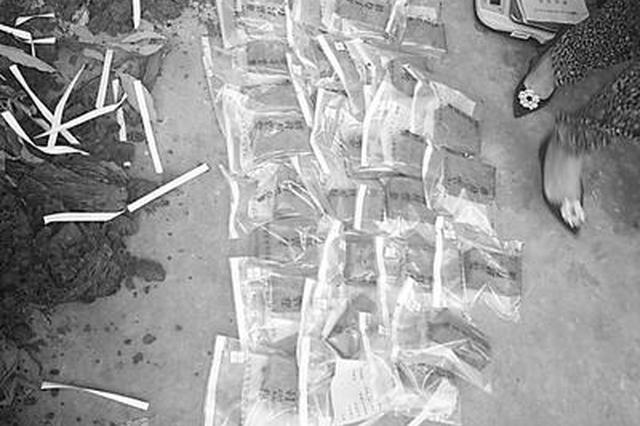 石家莊再破販賣毒品案 12公斤海洛因藏在芒果苗根里