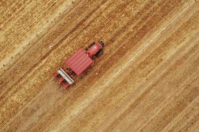 一个传统农业县的脱贫之路 来自河北新河的调查报告