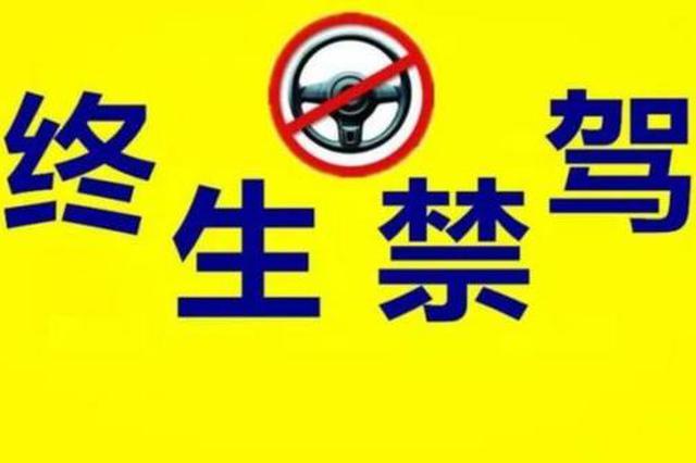 河北公布4至6月終生禁駕人員名單 421人被曝光