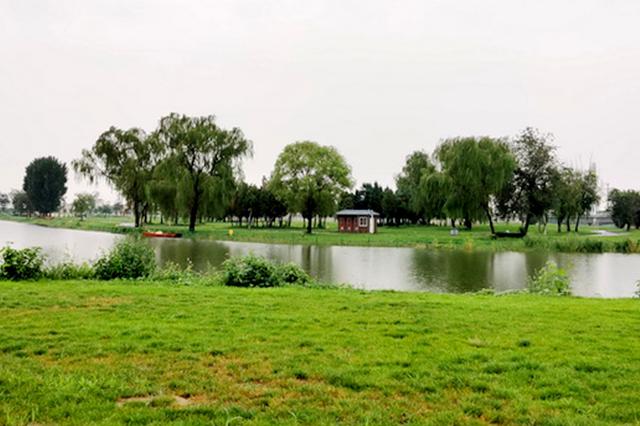沧州大运河:颜值爆棚成生态休闲打卡地