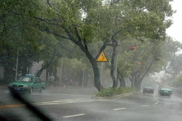 河北继续发布台风蓝色预警 东北部地区风雨交加