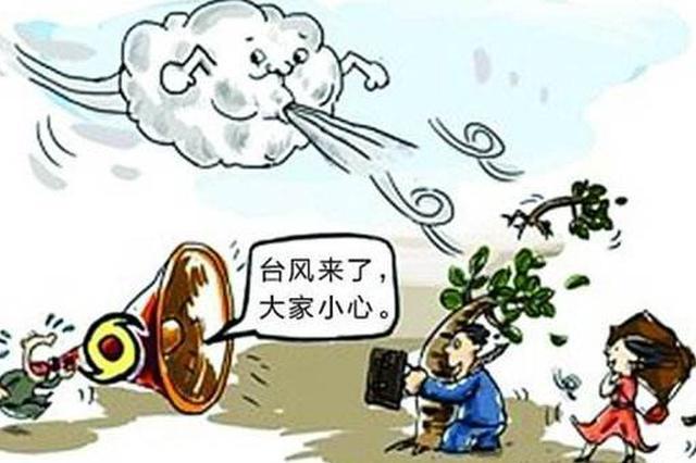 """河北省积极防范应对第9号台风""""利奇马"""""""