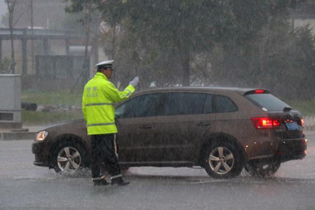 """""""利奇马""""来袭 沧州降雨局地降雨量达213.6毫米"""