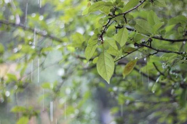 今天河北省内中北部有小雨 各地最高气温下降