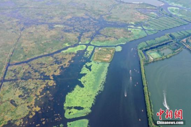2019年以来河北累计向白洋淀补水超3亿立方米