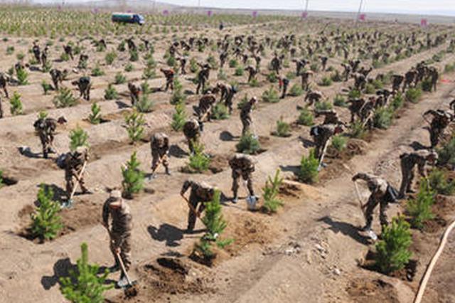 河北将投入8.68亿元支持坝上地区植树造林