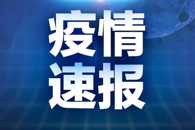 河北省确诊首例输入性新型冠状病毒肺炎病例