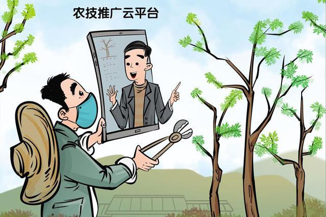 """河北战""""疫""""岗上看农忙:网上学农技 春耕不费力"""