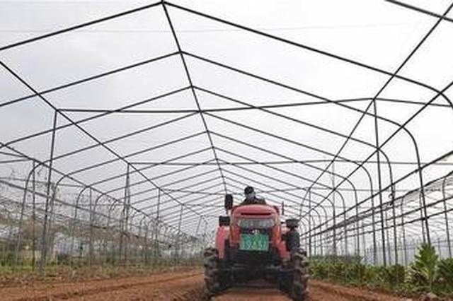 扎实抓好春季农业生产