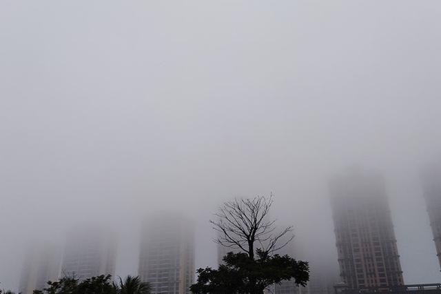 今天多地风力加大 上午时段局地有雾