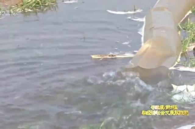 河北:春耕春管正当时 防疫生产两不误