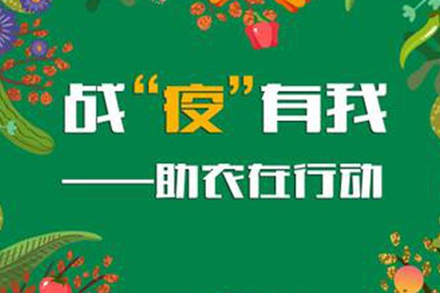 """河北网友发来滞销百万斤以上农产品信息32条!让我们一起""""线"""