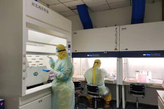 """探访河北省胸科医院新冠病毒核酸检测团队:与""""病毒""""共舞的"""