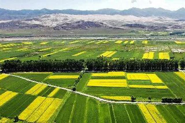 河北5县区入选全国绿色防控示范县