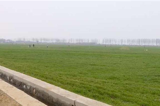 河北省39个大中型灌区已春灌农田240多万亩