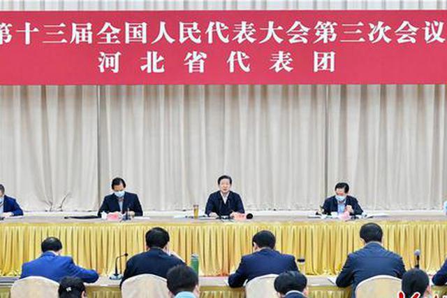 河北省代表团审查计划报告和预算报告审议民法典草案