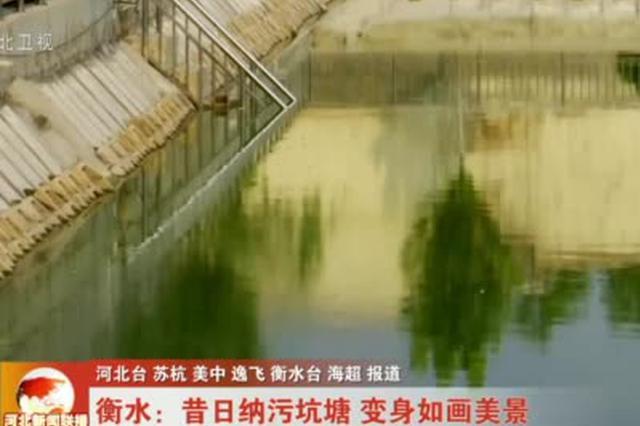 【走向我们的小康生活】衡水:昔日纳污坑塘 变身如画美景