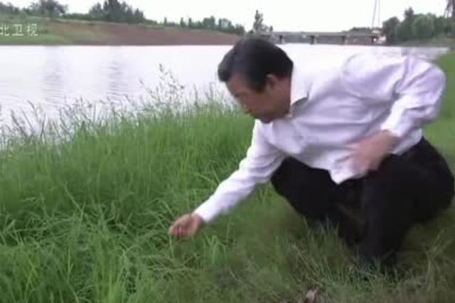 王东峰在邢台市调研检查