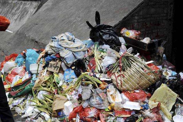 河北衡水:整顿餐厨垃圾违法倾倒 个人最高罚10万元