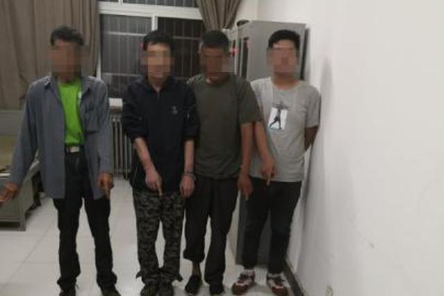 河北涿州:4名男子猎捕400余只无蹼壁虎被刑拘