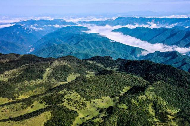 云起峰峦间 紫柏山如画