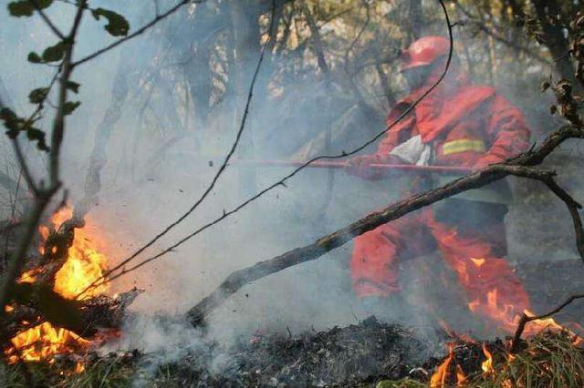 我国已进入秋冬季防火期 今年以来全国森林火灾同比减少近四成