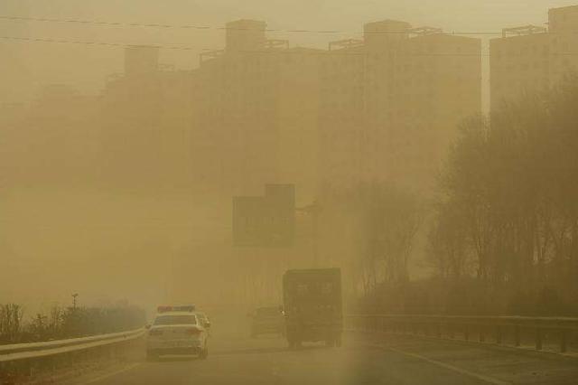京津风沙源治理工程20年累计完成营造林902.9万公顷