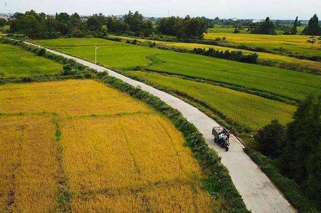 深化农村公路管理养护体制改革试点地区名单公布