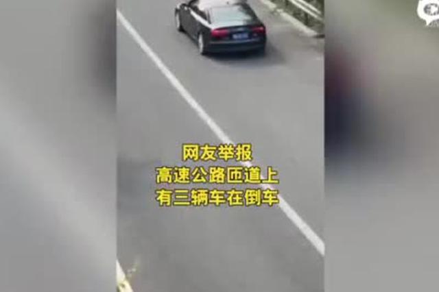 高速公路上组团倒车 河北高速交警:罚