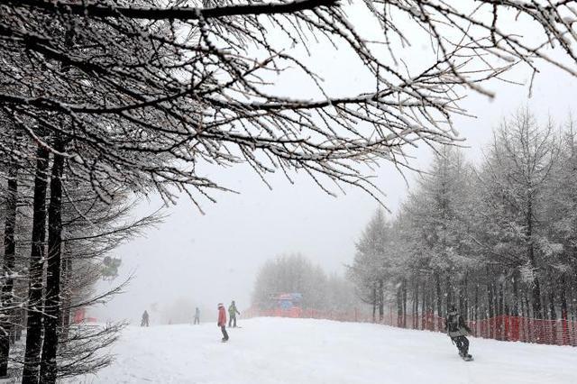 河北崇礼迎来大范围降雪
