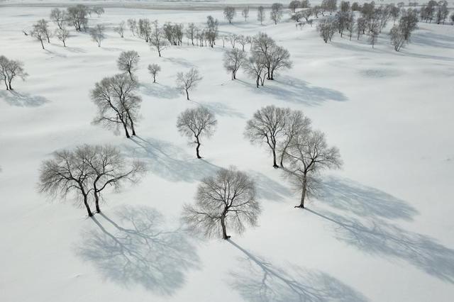 坝上冬景美如画