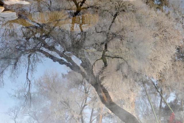 雾凇扮美避暑山庄