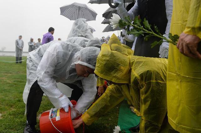 首个京津冀节地生态安葬标准发布:墓位面积不大于0.8㎡