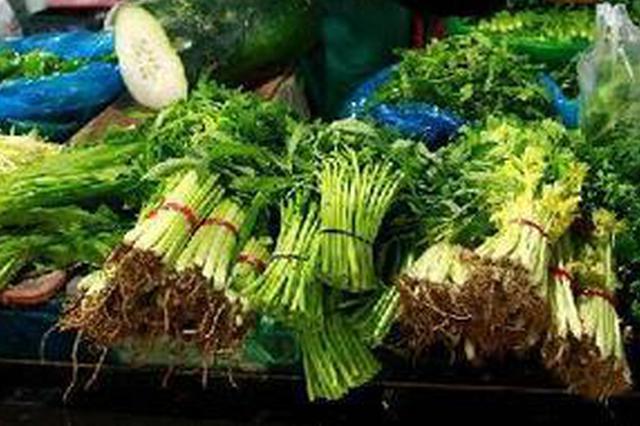 石家庄蔬菜供应充足 商超、小店线上线下忙----记者走访市场见