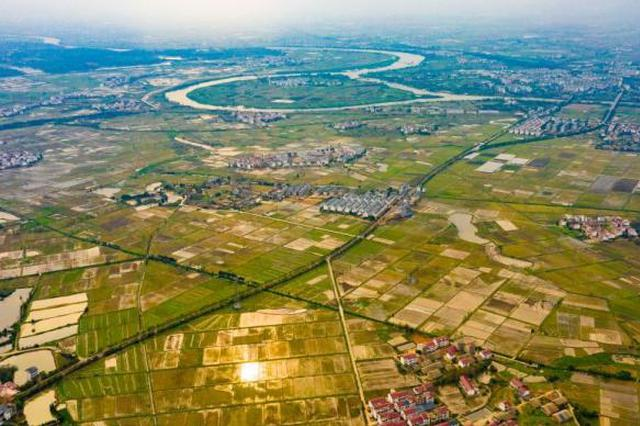 农业农村部公布农产品质量安全监管执法典型案例