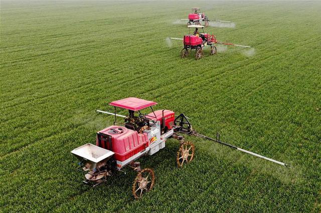 河北:做强12个特色优势产业 加速向农业强省迈进