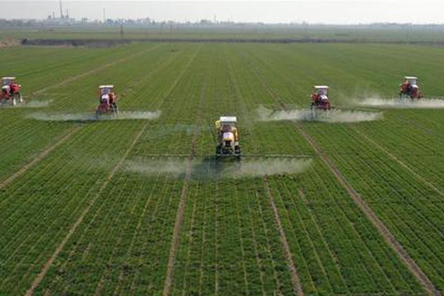 """农业农村部:做好""""倒春寒""""防范 确保农业生产安全"""