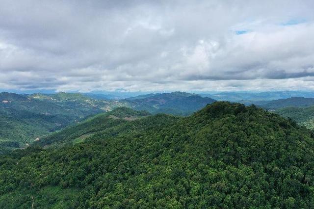 崇礼森林覆盖率提高至67%