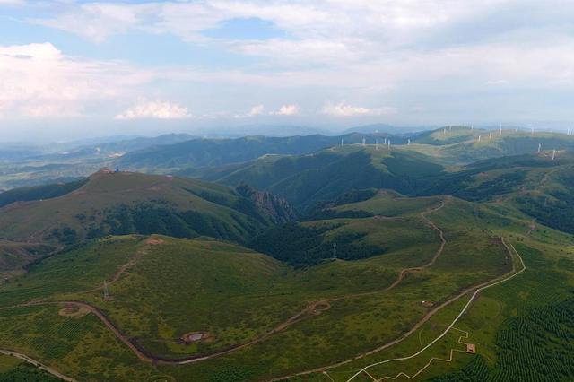 """建設首都""""兩區"""",2020年張家口完成營造林130.03萬畝"""