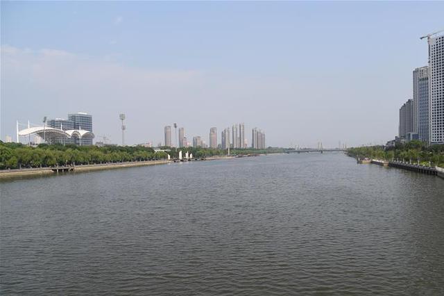 北运河香河段新增3000余株景观树