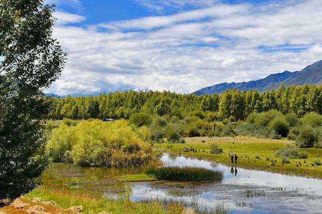 今年河北将修复20万亩草原