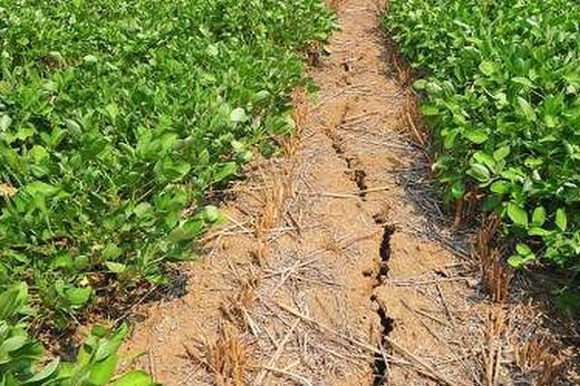 河北井陉:政府帮助农民协调解决土地纠纷问题