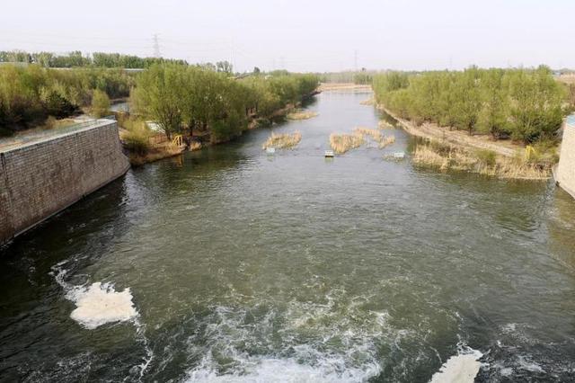 张家口成立永定河湿地修复示范中心