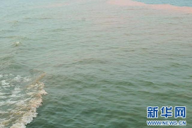 河北省渤海综合治理取得显著成效 优良水质比例达到99%